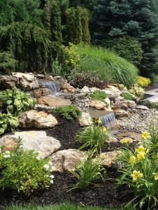 pond_slideshow