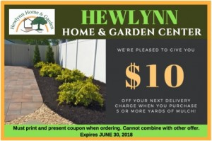 June Coupon for Hewlynn