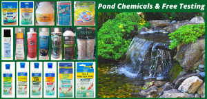Copy of Pool & Pond Chemicals