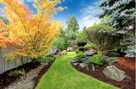 Benefits of Mulching Your Property