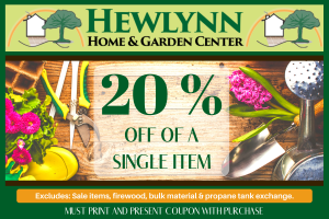 HEWLYNN COUPON FOR WEBSITE