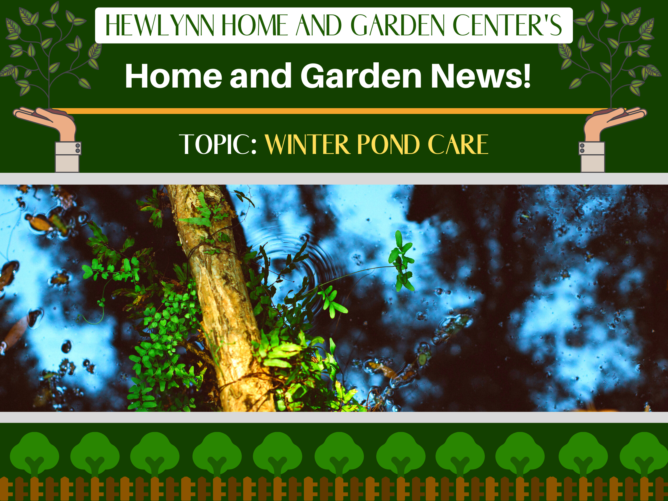 Hewlynn Home and Garden Center's