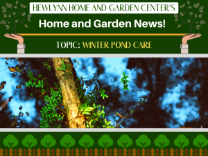 Hewlynn Home and Garden Center's