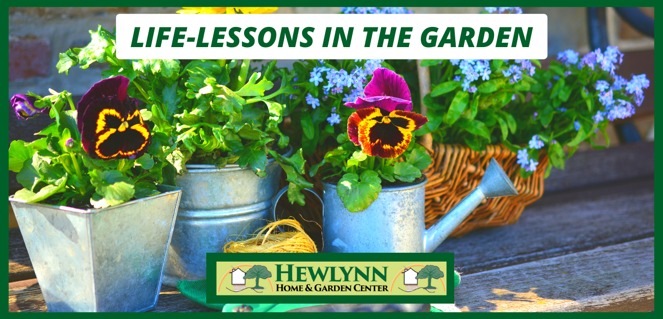 LIFE-LESSONS IN THE GARDEN