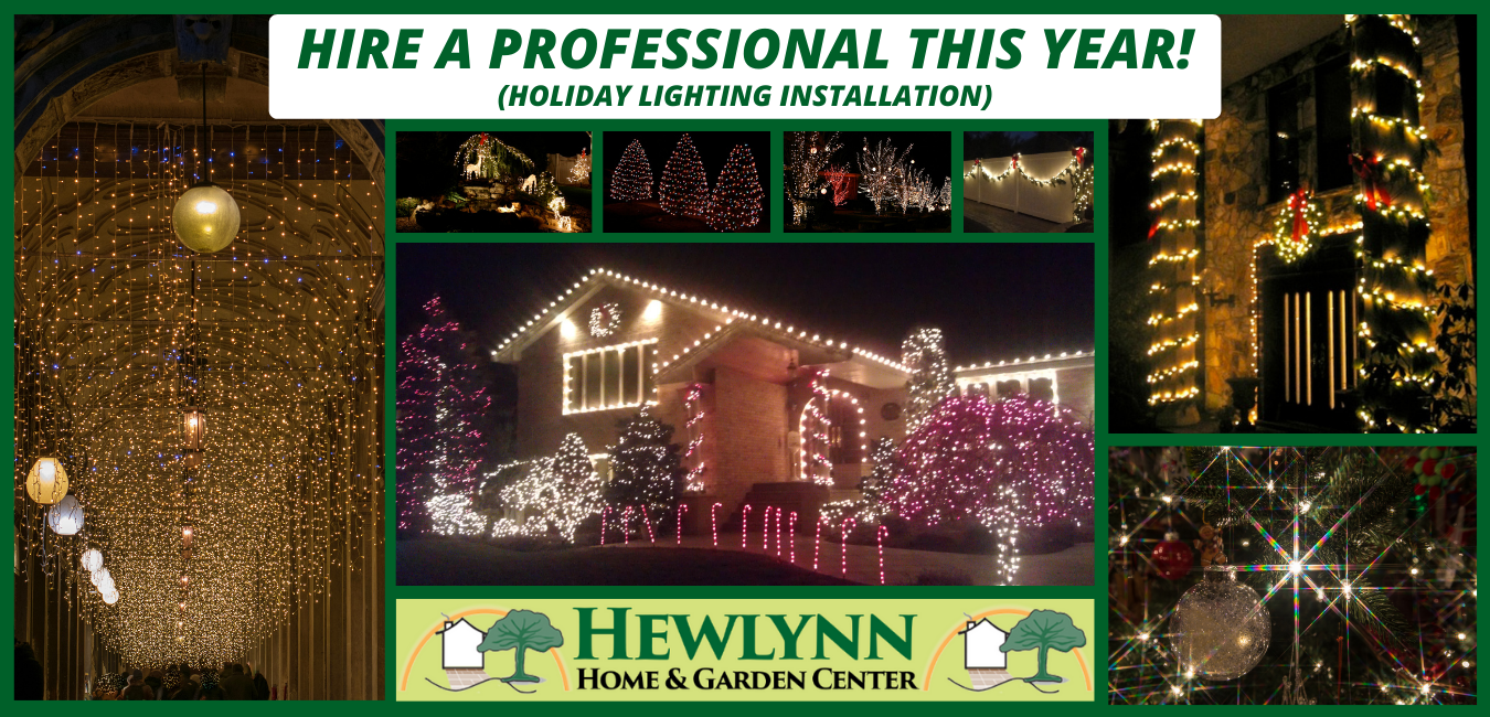 HIRE A PROFESSIONAL THIS YEAR! (HOLIDAY LIGHTING INSTALLATION)